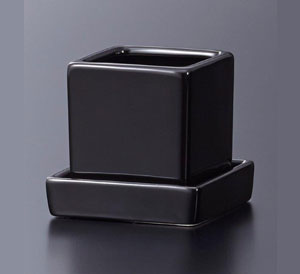 Cal Mini Square Pot with Saucer Blk