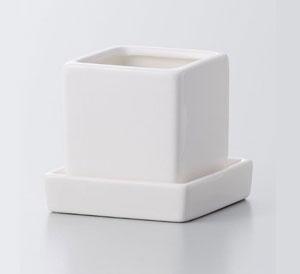 Cal Mini Square Pot with Saucer Wht