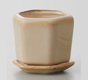 Cal Wa Roku Pot with Saucer Ivory