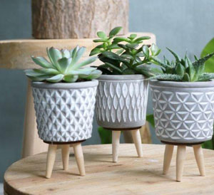 Cement Conical Pot with Leg Assorted